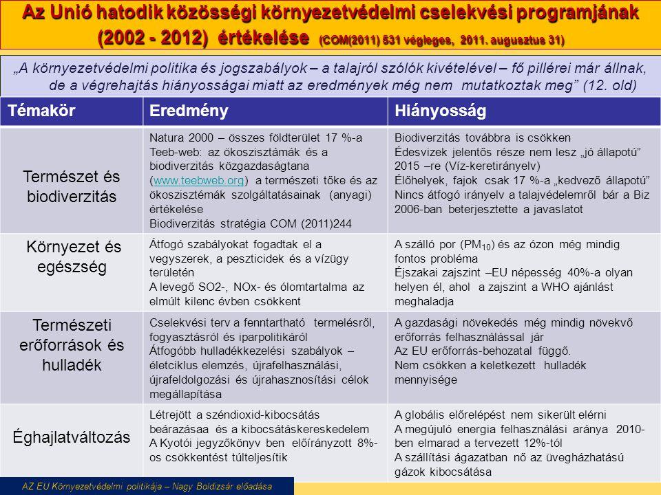 Az Unió hatodik közösségi környezetvédelmi cselekvési programjának (2002 - 2012) értékelése (COM(2011) 531 végleges, 2011. augusztus 31)