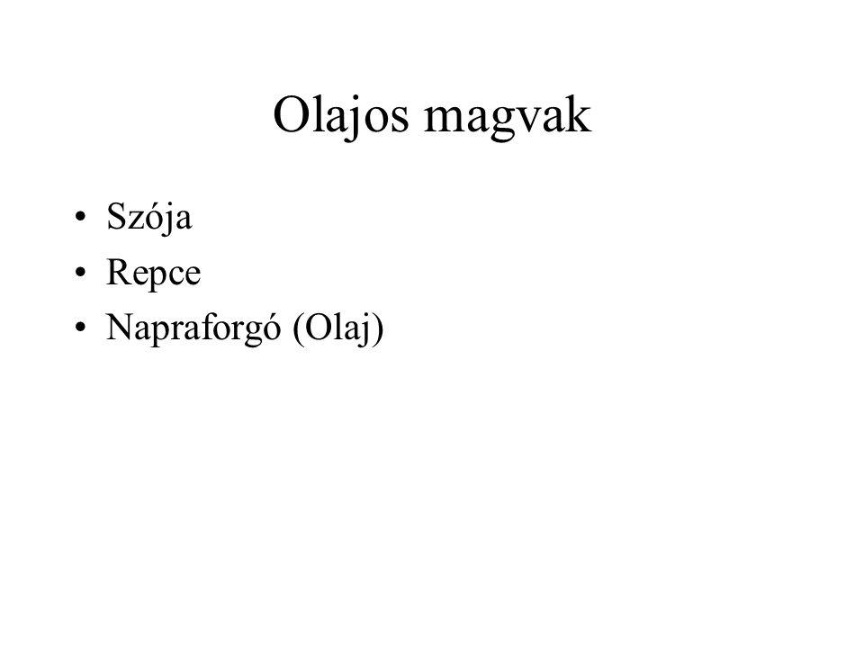 Olajos magvak Szója Repce Napraforgó (Olaj)