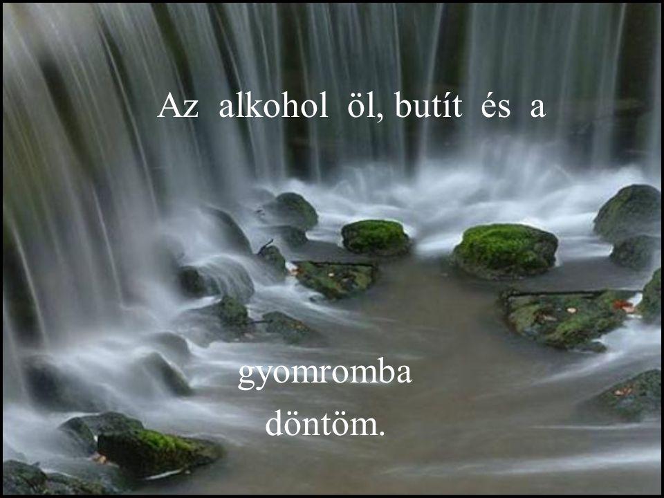 Az alkohol öl, butít és a gyomromba döntöm.