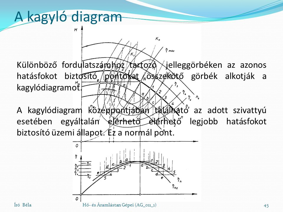 A kagyló diagram