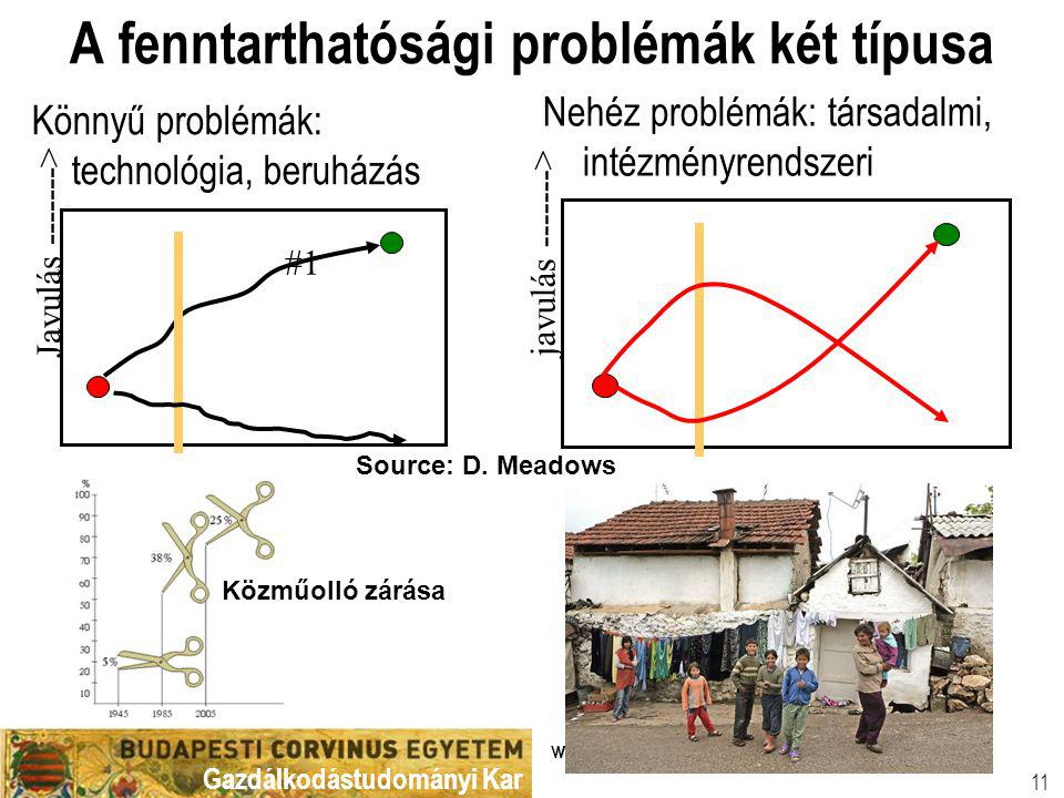 A fenntarthatósági problémák két típusa