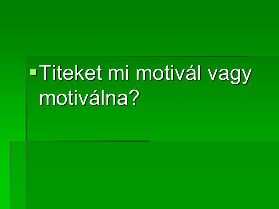 Titeket mi motivál vagy motiválna
