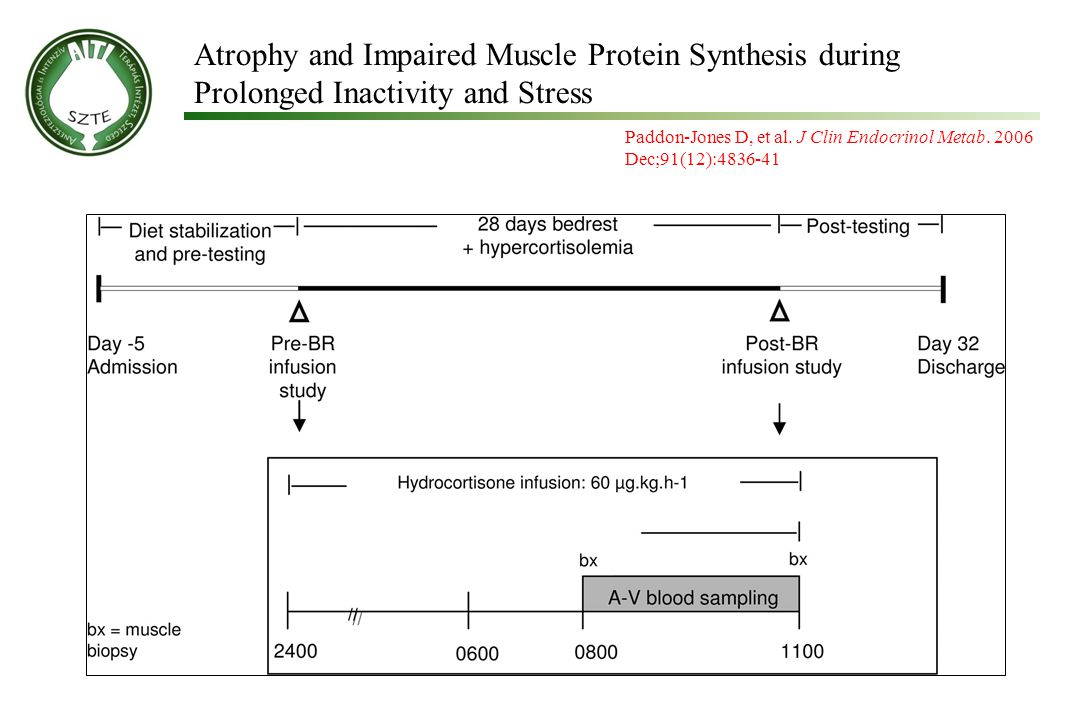 Atrophy and Impaired Muscle Protein Synthesis during Prolonged Inactivity and Stress