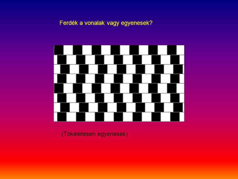 Ferdék a vonalak vagy egyenesek