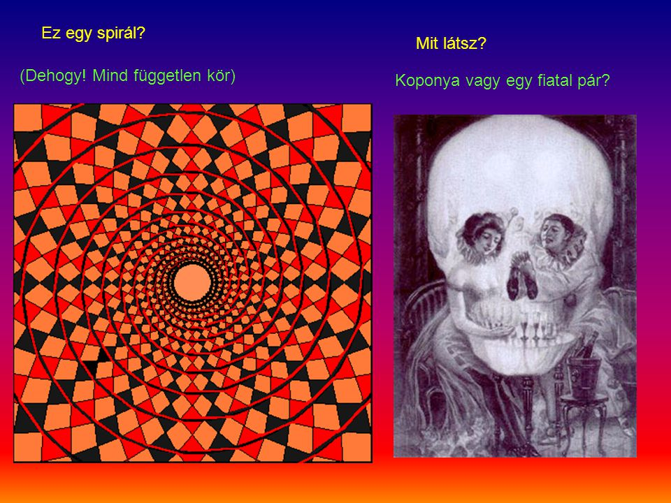 Ez egy spirál Mit látsz (Dehogy! Mind független kör) Koponya vagy egy fiatal pár