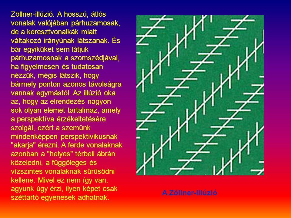 Zöllner-illúzió. A hosszú, átlós vonalak valójában párhuzamosak, de a keresztvonalkák miatt váltakozó irányúnak látszanak. És bár egyiküket sem látjuk párhuzamosnak a szomszédjával, ha figyelmesen és tudatosan nézzük, mégis látszik, hogy bármely ponton azonos távolságra vannak egymástól. Az illúzió oka az, hogy az elrendezés nagyon sok olyan elemet tartalmaz, amely a perspektíva érzékeltetésére szolgál, ezért a szemünk mindenképpen perspektivikusnak akarja érezni. A ferde vonalaknak azonban a helyes térbeli ábrán közeledni, a függőleges és vízszintes vonalaknak sűrűsödni kellene. Mivel ez nem így van, agyunk úgy érzi, ilyen képet csak széttartó egyenesek adhatnak.