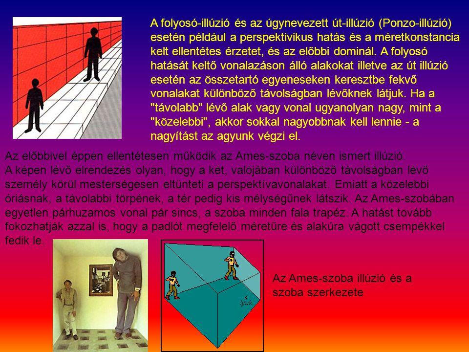 A folyosó-illúzió és az úgynevezett út-illúzió (Ponzo-illúzió) esetén például a perspektivikus hatás és a méretkonstancia kelt ellentétes érzetet, és az előbbi dominál. A folyosó hatását keltő vonalazáson álló alakokat illetve az út illúzió esetén az összetartó egyeneseken keresztbe fekvő vonalakat különböző távolságban lévőknek látjuk. Ha a távolabb lévő alak vagy vonal ugyanolyan nagy, mint a közelebbi , akkor sokkal nagyobbnak kell lennie - a nagyítást az agyunk végzi el.