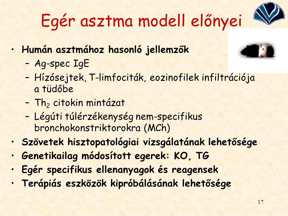 Egér asztma modell előnyei
