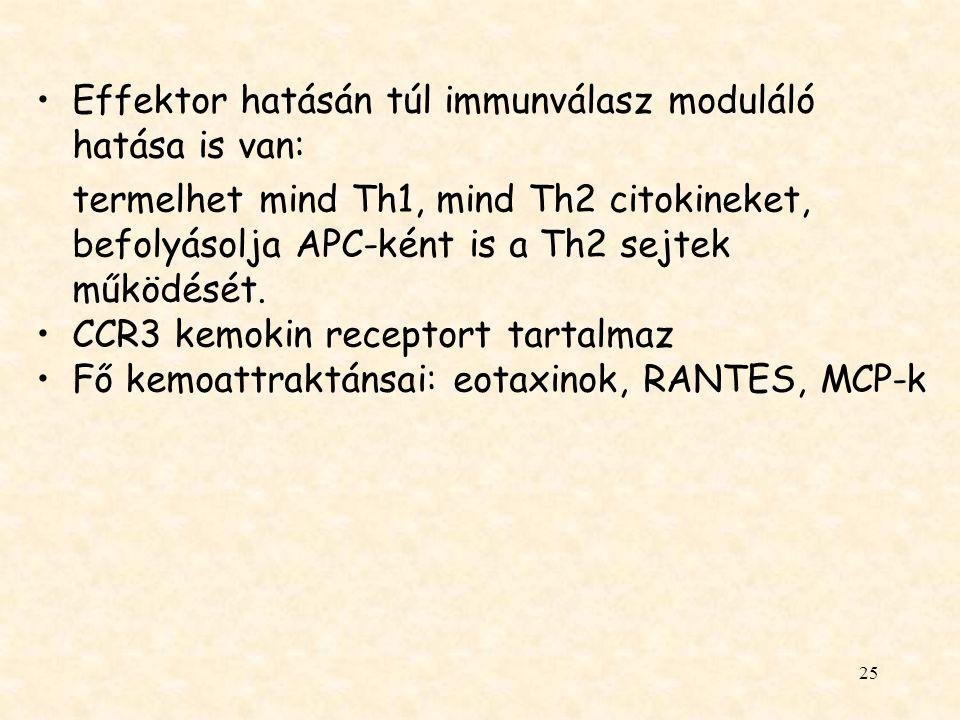 Effektor hatásán túl immunválasz moduláló hatása is van: