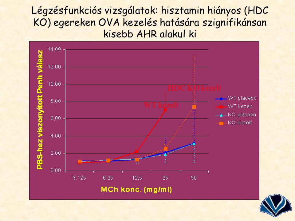 Légzésfunkciós vizsgálatok: hisztamin hiányos (HDC KO) egereken OVA kezelés hatására szignifikánsan kisebb AHR alakul ki