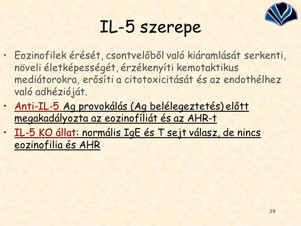 IL-5 szerepe
