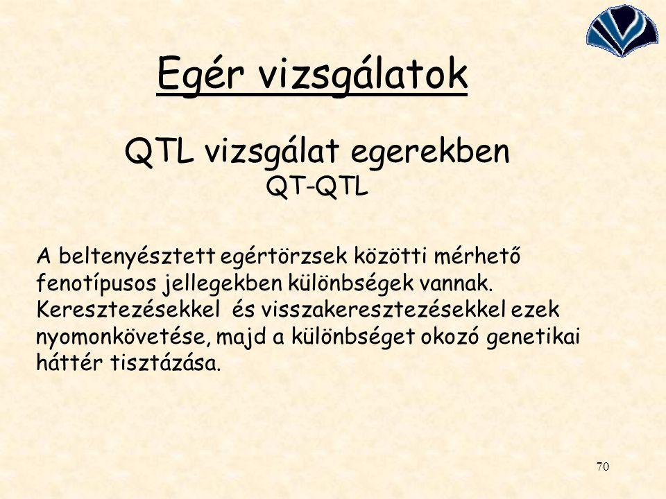 QTL vizsgálat egerekben QT-QTL