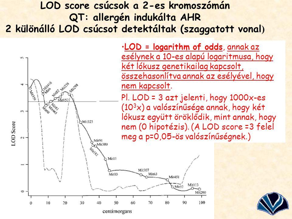 LOD score csúcsok a 2-es kromoszómán QT: allergén indukálta AHR 2 különálló LOD csúcsot detektáltak (szaggatott vonal)