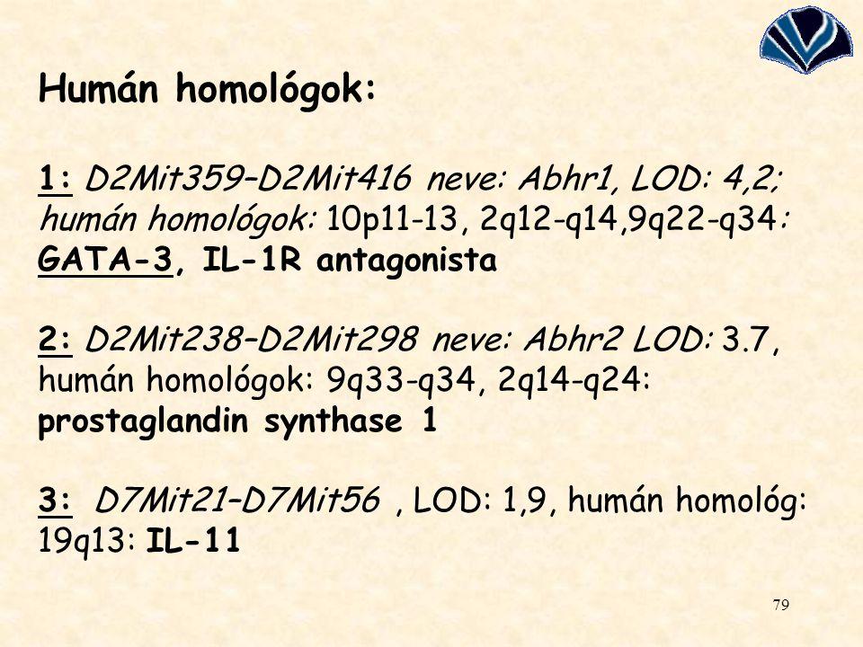 Humán homológok: 1: D2Mit359–D2Mit416 neve: Abhr1, LOD: 4,2; humán homológok: 10p11-13, 2q12-q14,9q22-q34: GATA-3, IL-1R antagonista 2: D2Mit238–D2Mit298 neve: Abhr2 LOD: 3.7, humán homológok: 9q33-q34, 2q14-q24: prostaglandin synthase 1 3: D7Mit21–D7Mit56 , LOD: 1,9, humán homológ: 19q13: IL-11