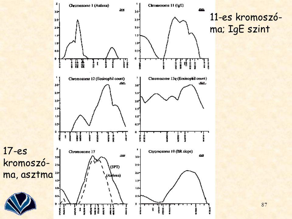 11-es kromoszó-ma; IgE szint