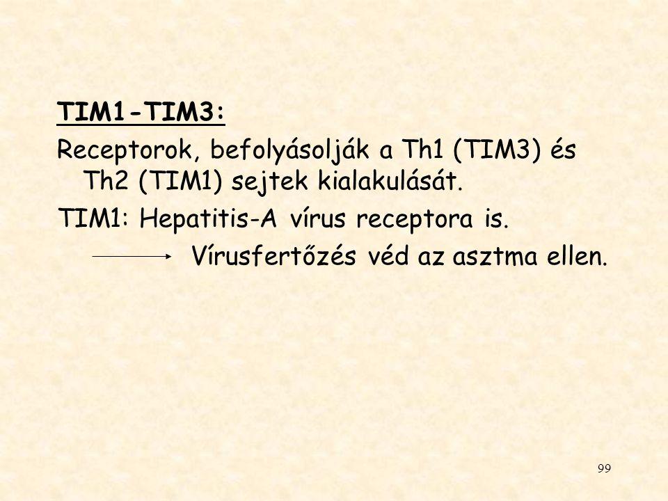 TIM1-TIM3: Receptorok, befolyásolják a Th1 (TIM3) és Th2 (TIM1) sejtek kialakulását. TIM1: Hepatitis-A vírus receptora is.
