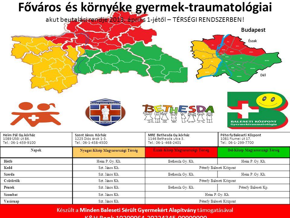 Főváros és környéke gyermek-traumatológiai akut beutalási rendje 2013