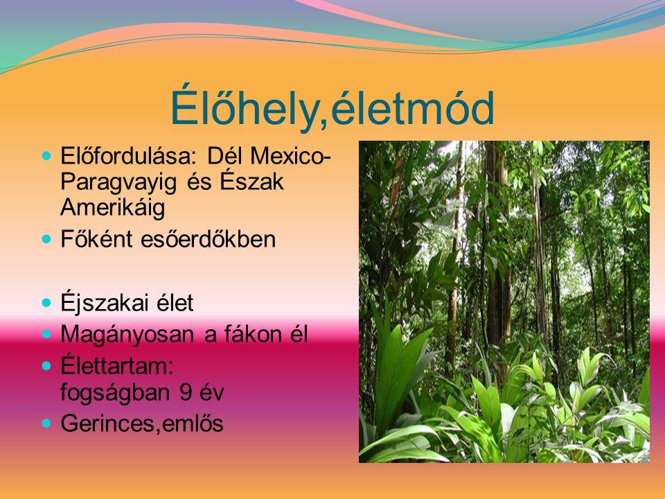 Élőhely,életmód Előfordulása: Dél Mexico-Paragvayig és Észak Amerikáig