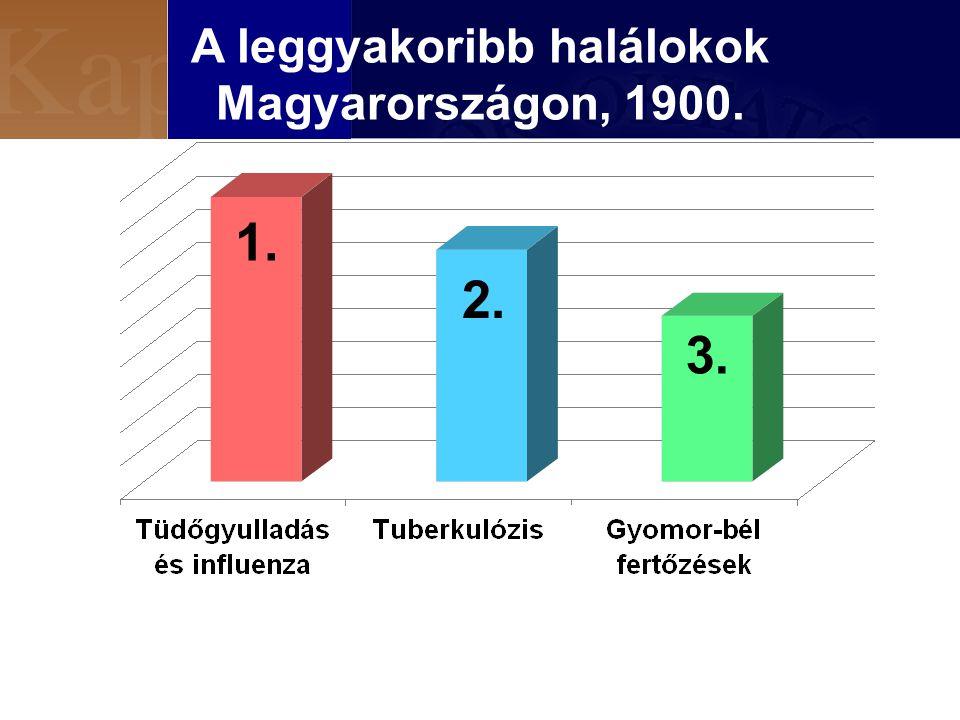 A leggyakoribb halálokok Magyarországon, 1900.