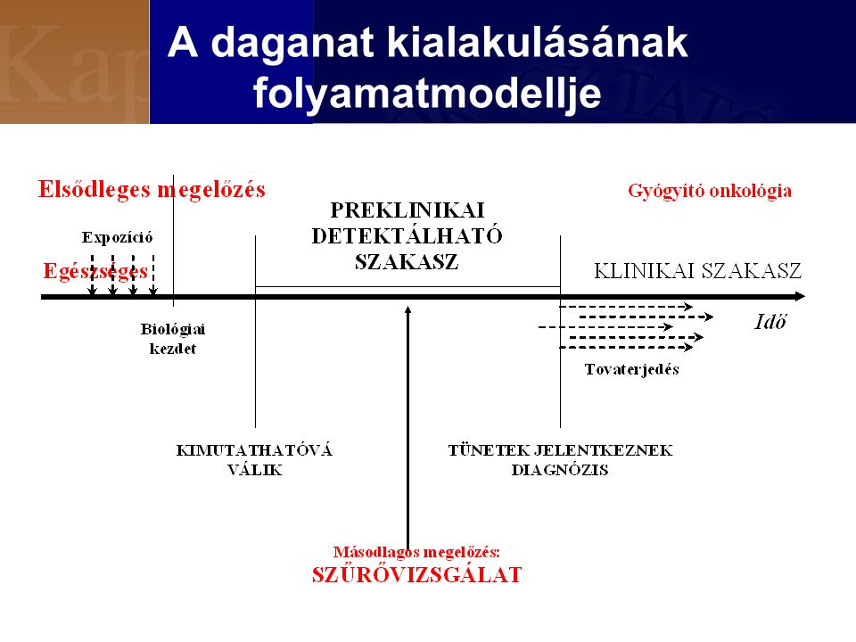 A daganat kialakulásának folyamatmodellje