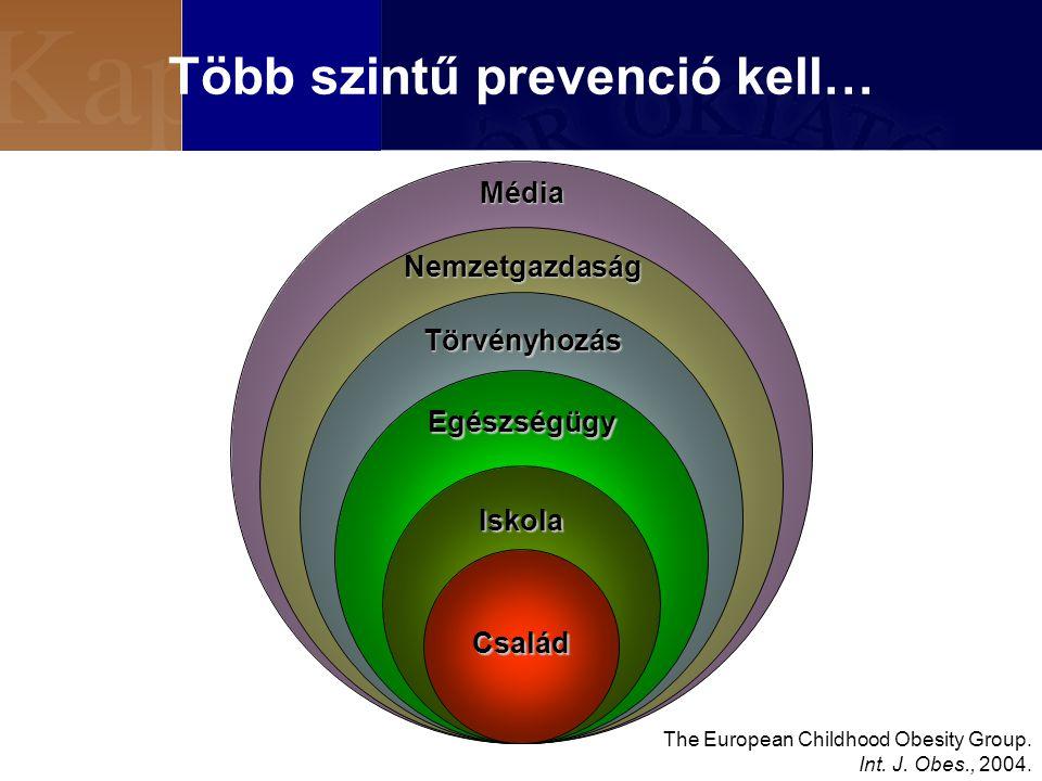 Több szintű prevenció kell…