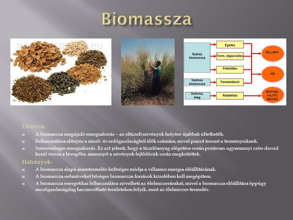 Előnyök: A biomassza megújuló energiaforrás – az eltüzelt növények helyére újabbak ültethetők.