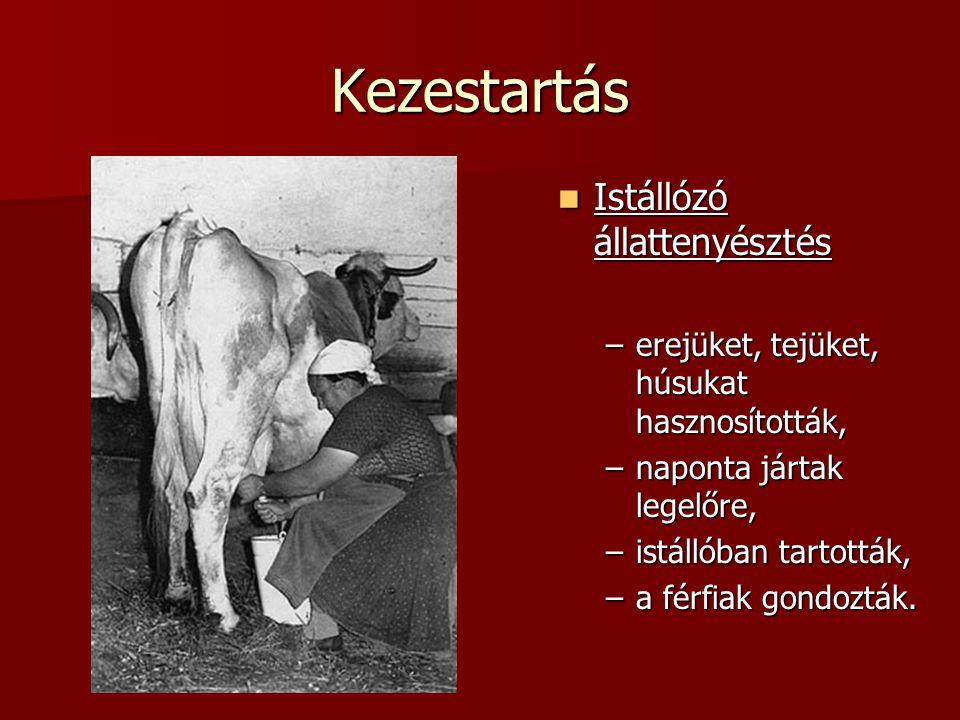 Kezestartás Istállózó állattenyésztés