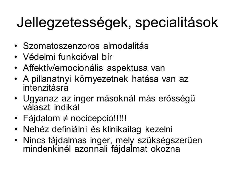 Jellegzetességek, specialitások