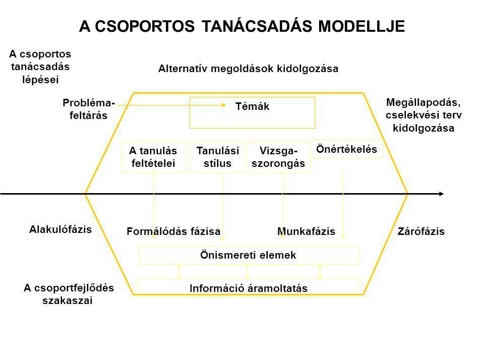 A CSOPORTOS TANÁCSADÁS MODELLJE