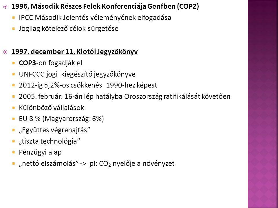 1996, Második Részes Felek Konferenciája Genfben (COP2)