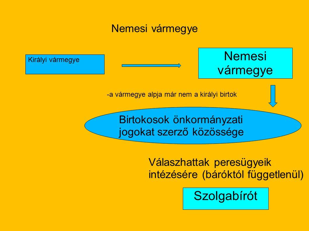 Nemesi vármegye Szolgabírót Nemesi vármegye