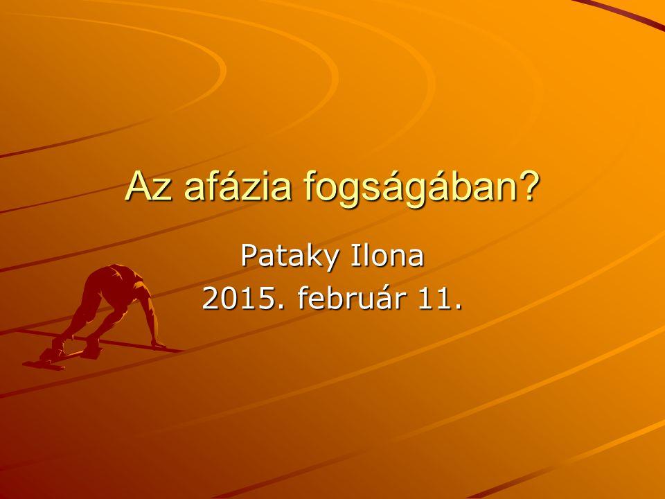 Az afázia fogságában Pataky Ilona 2015. február 11.