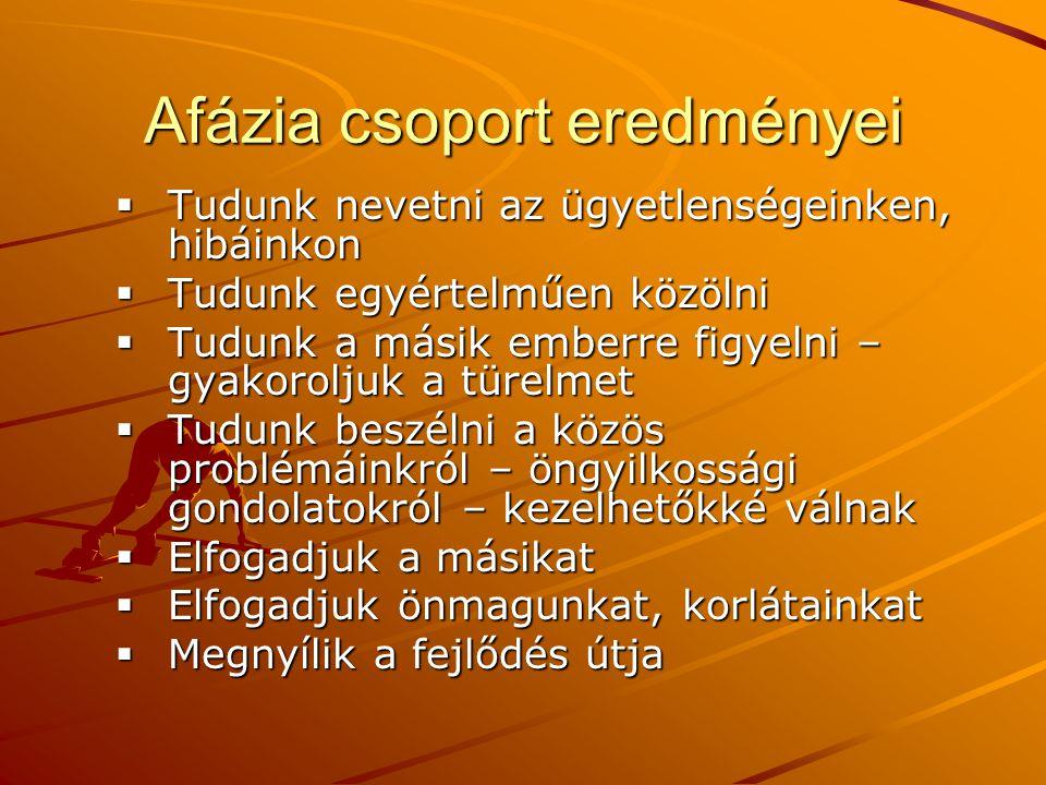 Afázia csoport eredményei