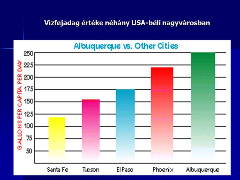 Vízfejadag értéke néhány USA-béli nagyvárosban