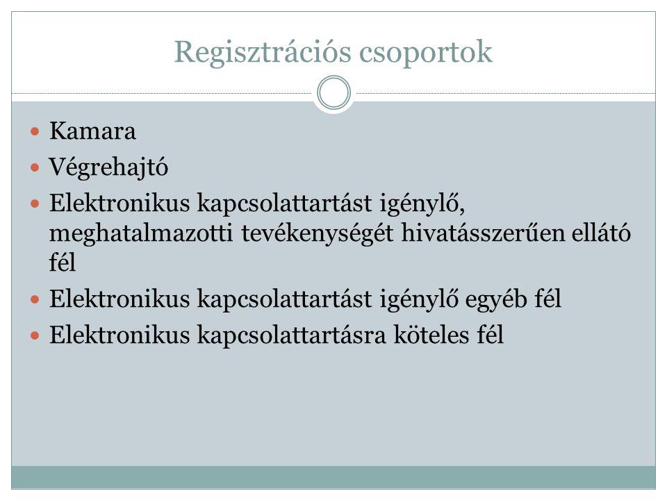 Regisztrációs csoportok