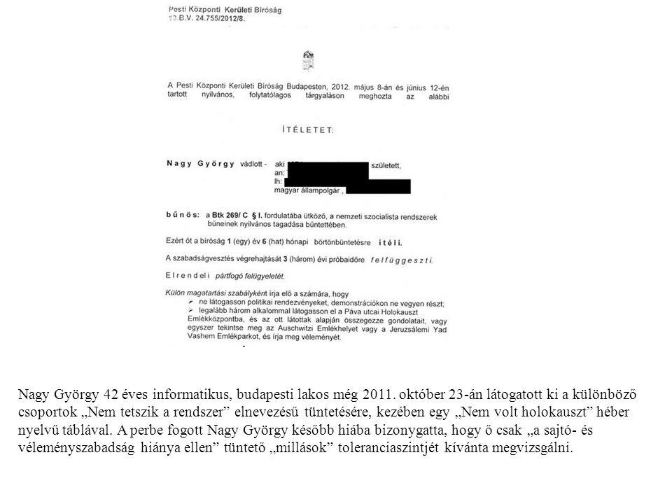 Nagy György 42 éves informatikus, budapesti lakos még 2011