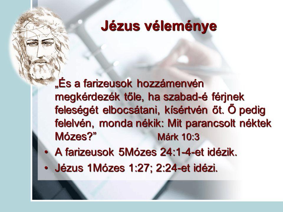 Jézus véleménye