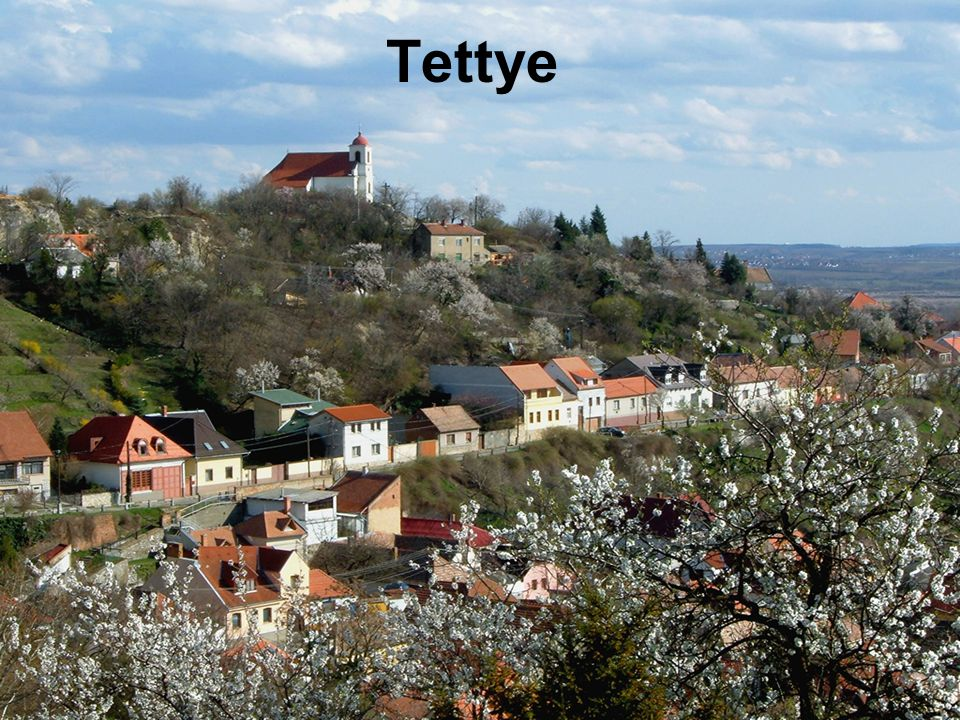 Tettye