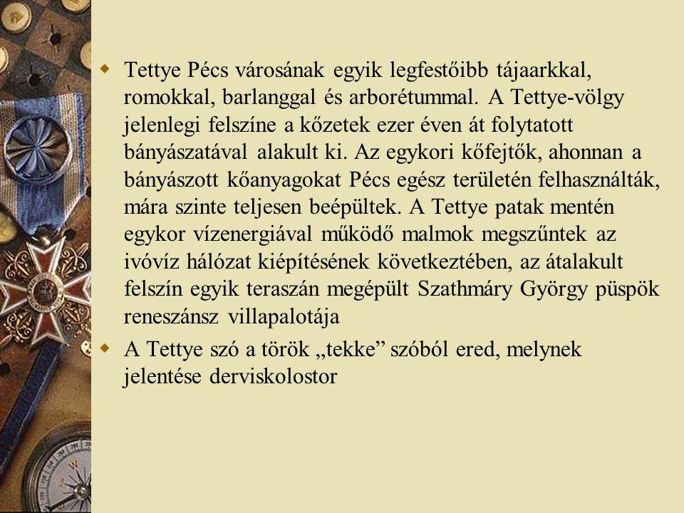 Tettye Pécs városának egyik legfestőibb tájaarkkal, romokkal, barlanggal és arborétummal. A Tettye-völgy jelenlegi felszíne a kőzetek ezer éven át folytatott bányászatával alakult ki. Az egykori kőfejtők, ahonnan a bányászott kőanyagokat Pécs egész területén felhasználták, mára szinte teljesen beépültek. A Tettye patak mentén egykor vízenergiával működő malmok megszűntek az ivóvíz hálózat kiépítésének következtében, az átalakult felszín egyik teraszán megépült Szathmáry György püspök reneszánsz villapalotája