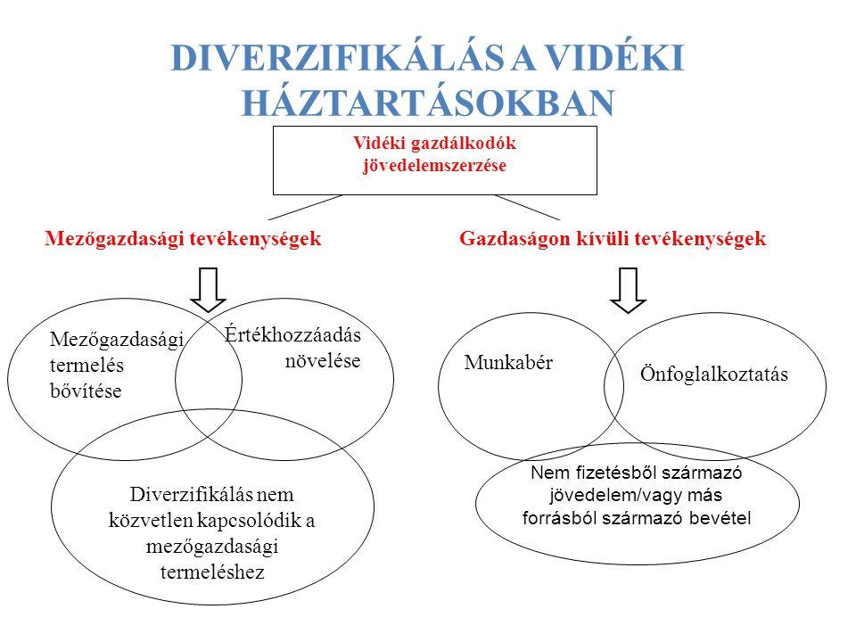 DIVERZIFIKÁLÁS A VIDÉKI HÁZTARTÁSOKBAN