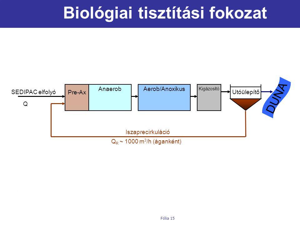 Biológiai tisztítási fokozat