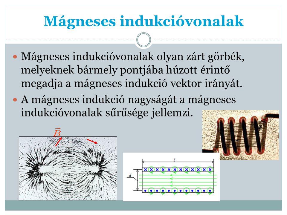 Mágneses indukcióvonalak