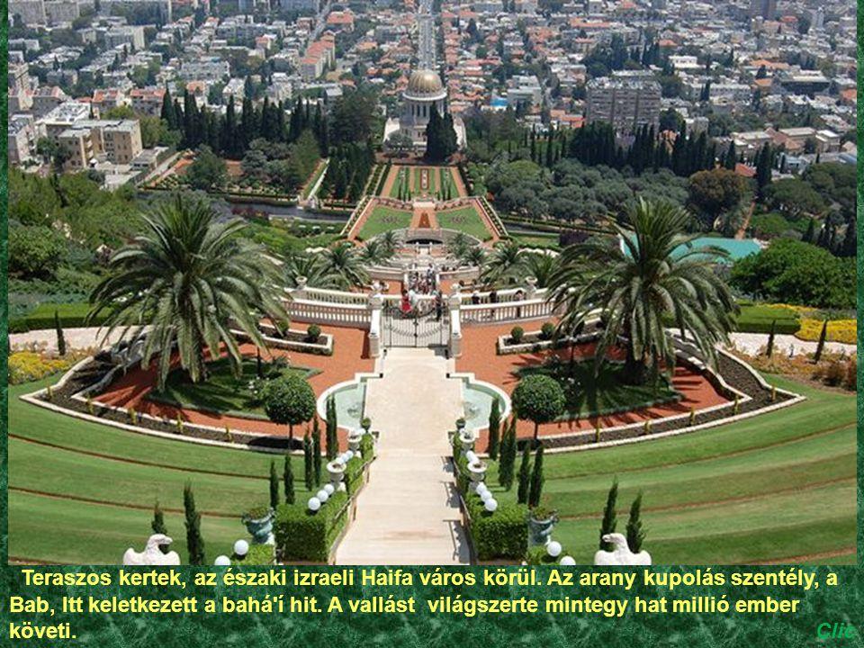 Teraszos kertek, az északi izraeli Haifa város körül