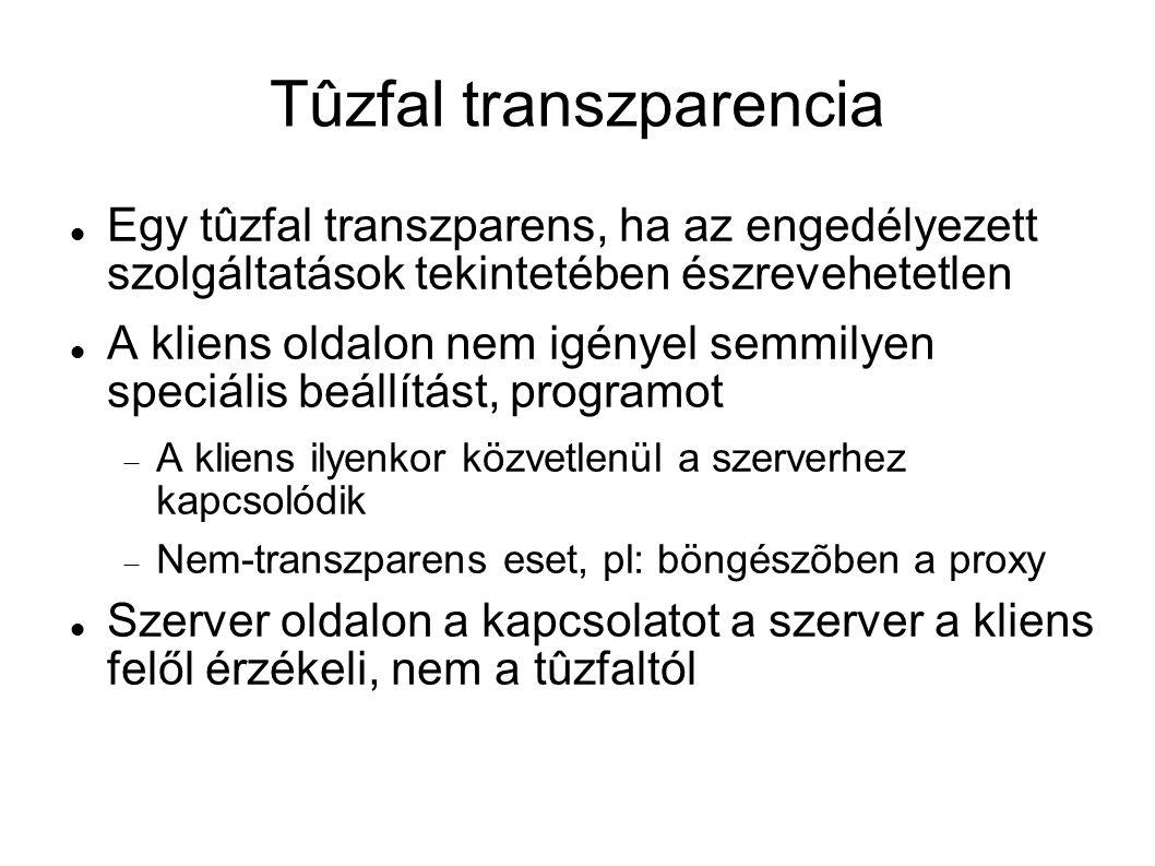 Tûzfal transzparencia