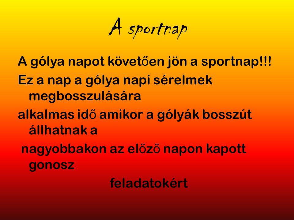 A sportnap