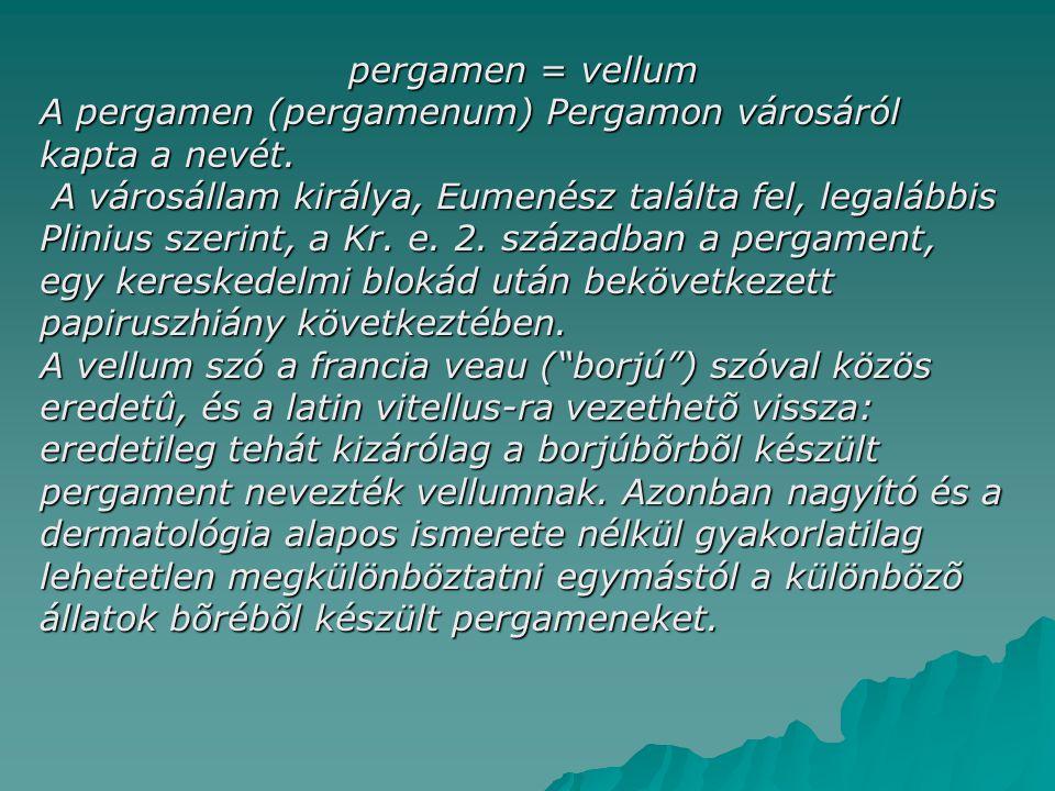 pergamen = vellum A pergamen (pergamenum) Pergamon városáról kapta a nevét.