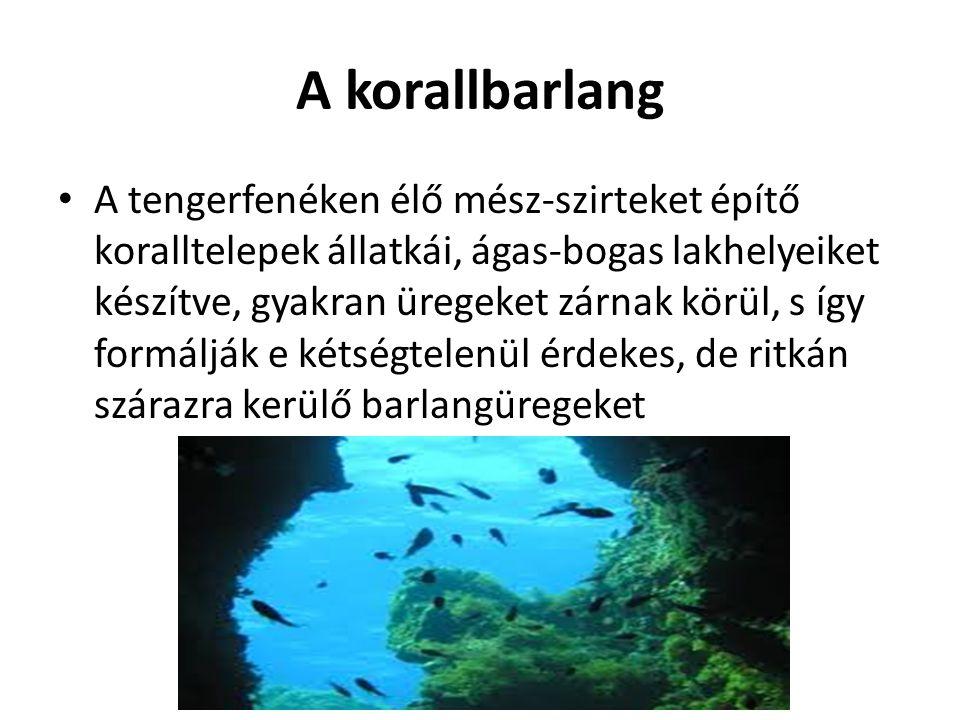 A korallbarlang