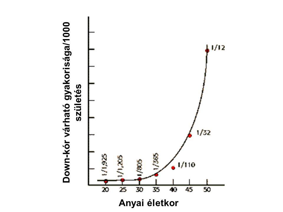 Down-kór várható gyakorisága/1000 születés