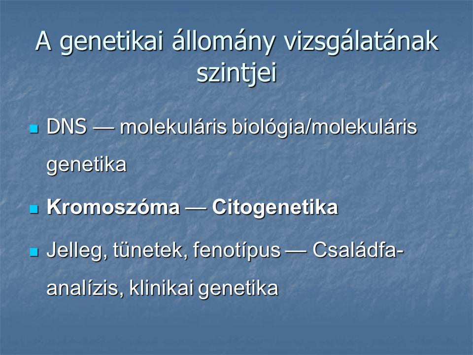 A genetikai állomány vizsgálatának szintjei