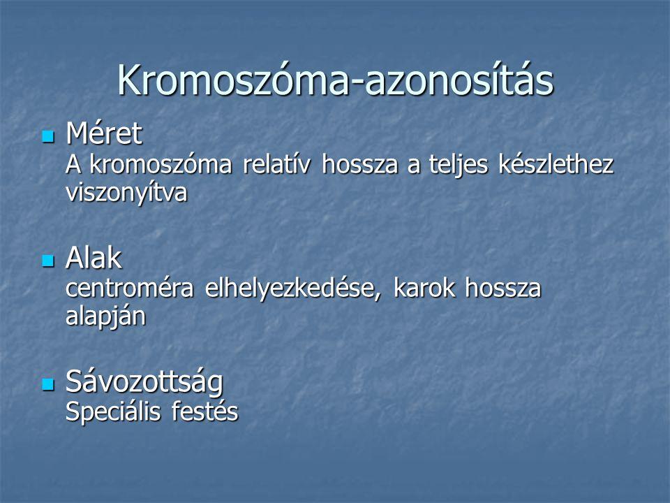 Kromoszóma-azonosítás